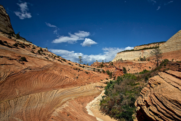 Zion National Park, 2007